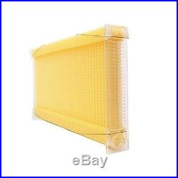 7 Auto Flow Frames Honey Combs Only 10-Frame Langstroth Beehive
