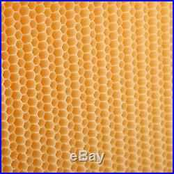 7Pcs Automatic Flow Honey Beehive Frames Kit Raw Bee Hive New Harvesting