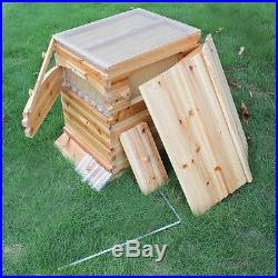 7X Auto Flow Honey Hive Beekeeping Frames + 1X Natural Wooden Beehive Housing