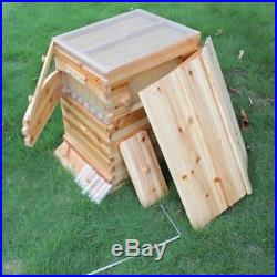 7pcs Auto Flow Honey Hive Beehive Frames + 2 Box Bee Beekeeping Wooden House US