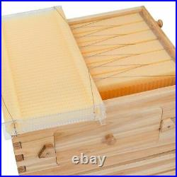 Auto Flow Hive Frames Beekeeping Kit Best Price & Fast Shipping