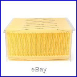 New Automatic Flow Raw Frames Honey Beekeeping Beehive Harvesting for Bee Keeper