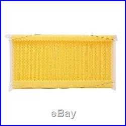WoW! 7 ^ Auto Flow Frames Honey Combs Only 10-Frame Langstroth Beehive